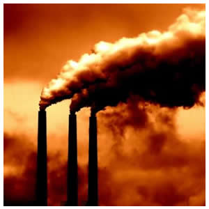Sustainability is Impossible without a Carbon Tax